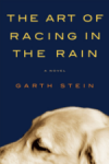 art-of-racing-in-rain